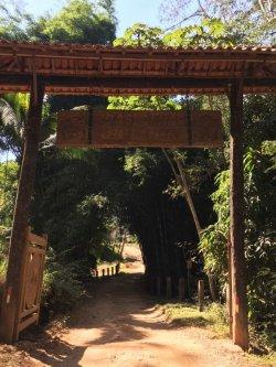 画像2: ブラジル ダスアルマス農園【中深煎り】
